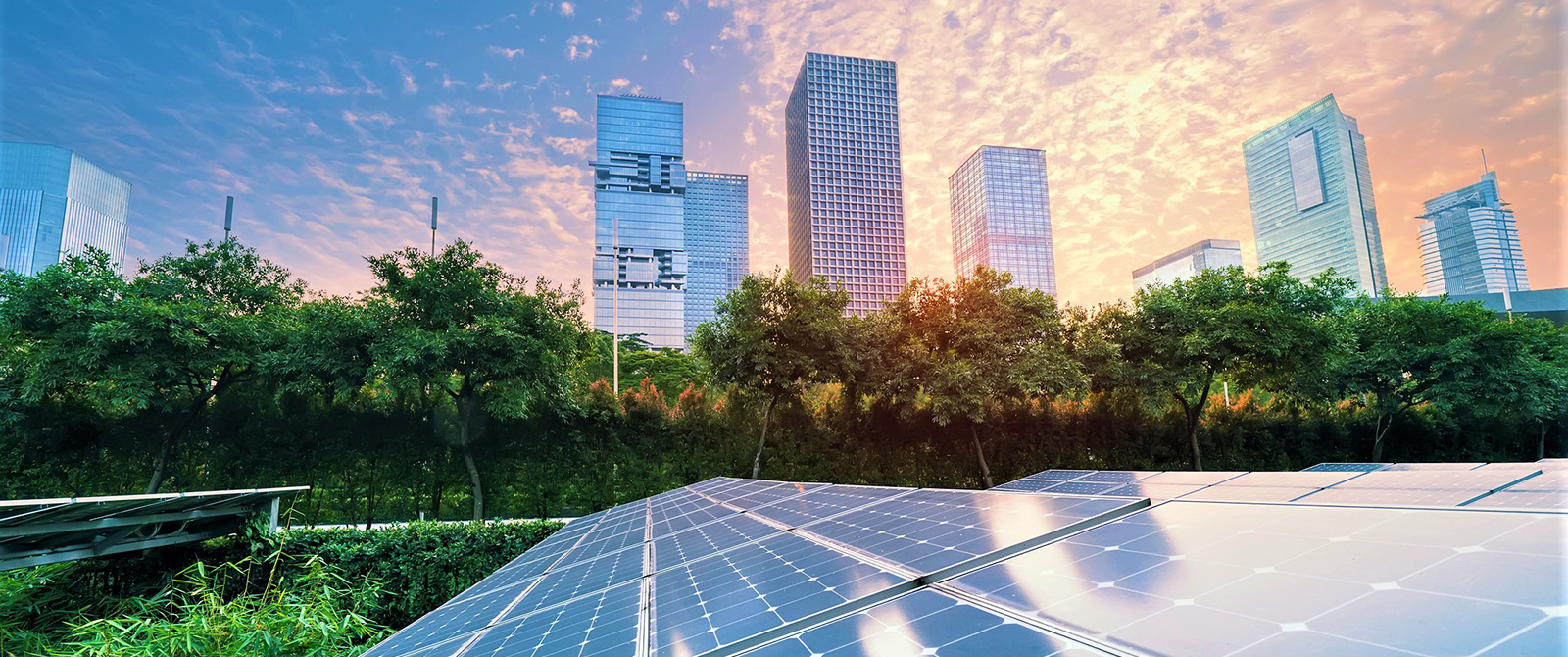 Solar panels with a city in the background