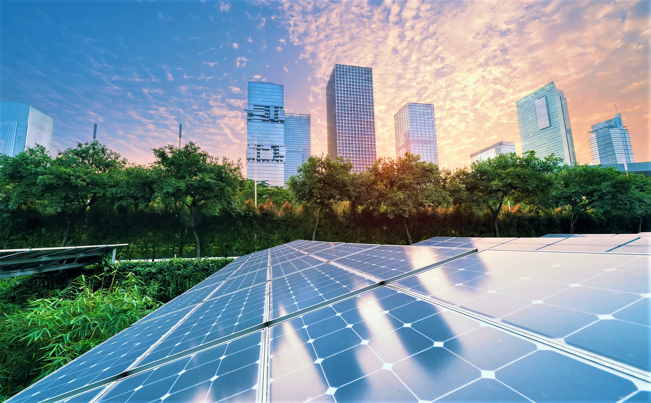 solar panels with a cityscape and trees in the background